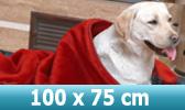 Hundedecken 100x75cm