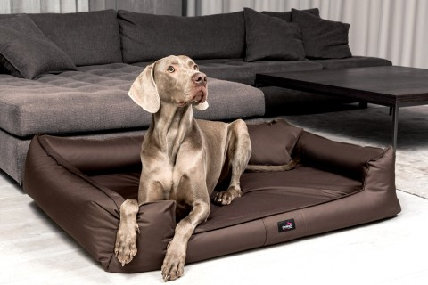 Orthopädisches Hundebett GOOFY VISCO XXL+ 160 cm Polyester 600D Braun XXL | Braun