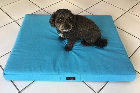AUSSTELLUNGSSTÜCK | Orthopädische Hundematratze ALICE L 100 cm in fein gewebtem Polsterstoff AUEN in türkis-blau