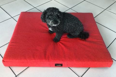 Auststellungsstück I Hundematratze WOTAN ORTHO 100 x 80 cm ROT