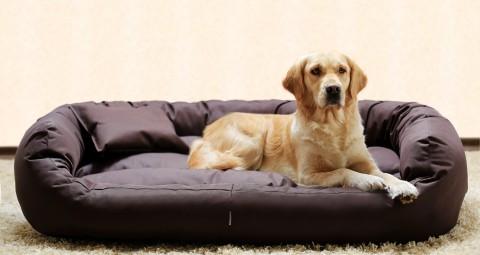 Hundebett ARES XL 110 cm Polyester 600D Braun