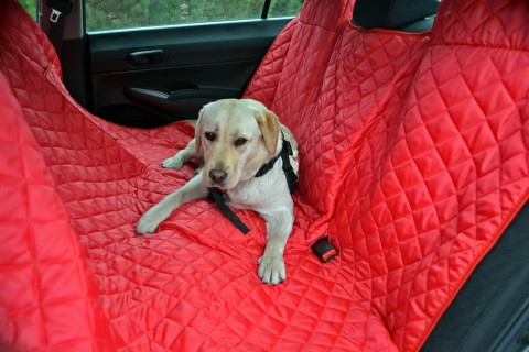 Autoschondecke, Autoschutzdecke, Hundedecke, 160 x 140 cm, Bordeaux-Rot