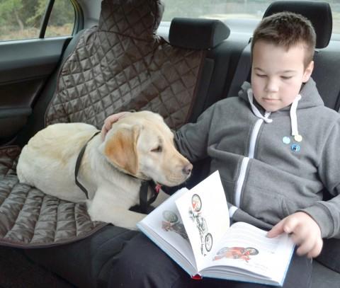 Autoschondecke, Autoschutzdecke, Hundedecke, mit Reißverschluß teilbar, 160 x 140 cm, Braun