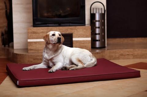 Orthopädische Hundematratze CARLOS VISCO XL 120 cm Kunstleder Bordeaux-Rot