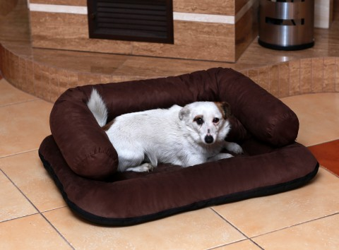 Hundebett CHARLY Velours