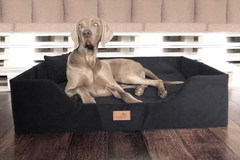 COLUMBUS | Orthopädisches Hundebett für Reisen und Urlaub mit Hund | Reisebett für Hunde