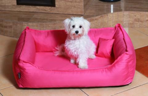 Orthopädisches Hundebett DONALD Visco S 70 cm Polyester 210D Pink