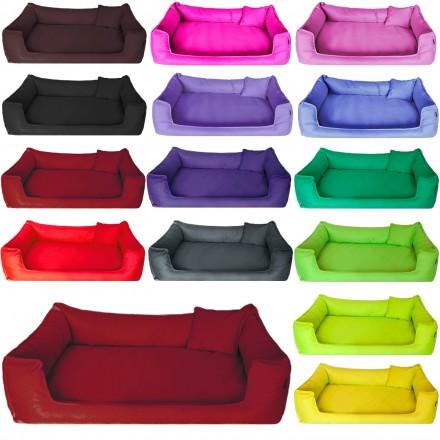 goofy ortho tierlando. Black Bedroom Furniture Sets. Home Design Ideas