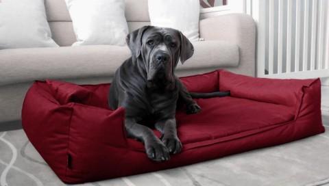 Orthopädisches Hundebett GOOFY VISCO XXL+ 160 cm Kunstleder Bordeaux