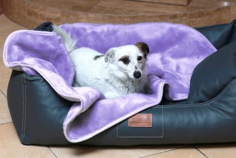 Hundedecke LILLY Plüschdecke 75x50 cm Flieder