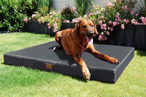 Hundematratze HUGO BASIC L 100 cm Polyester 210D Graphit Grau L | Graphit