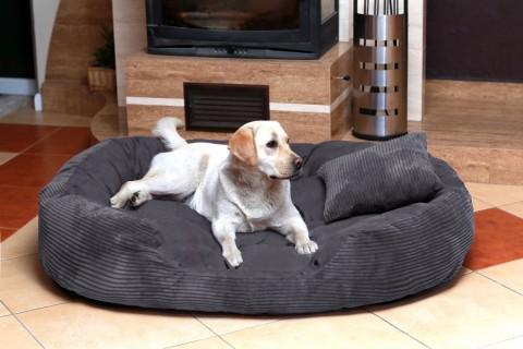 Hundebett PHILIP Cord-Velours