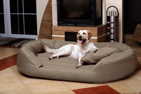 Hundebett SAMMY XXXL 170 cm Polyester 600D Beige Dunkel XXXL | Dunkel Beige