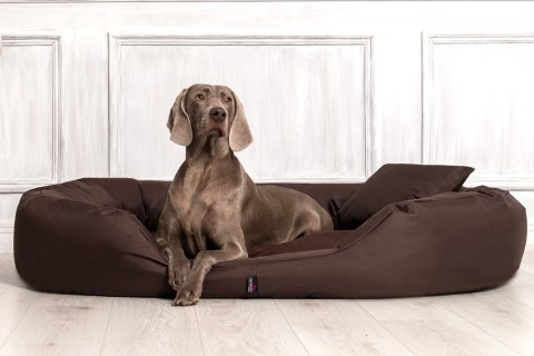 Hundebett SAMMY XXL 140 cm Polyester 600D Braun XXL | Braun