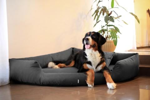 Orthopädisches Hundebett TRIVIA VISCO M 80 cm Polyester 600D Graphit