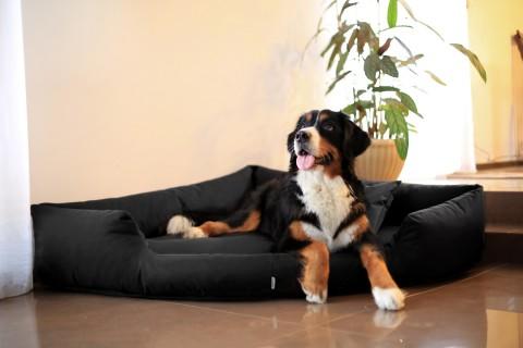 Orthopädisches Hundebett TRIVIA VISCO Polyester 600D