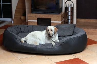 Hundebett PHILIP XXL 140 cm Kunstleder-Velours Graphit