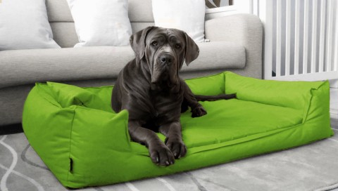 Orthopädisches Hundebett GOOFY VISCO L+ 110 cm Polyester 600D Neon Kiwi L   Neon Kiwi