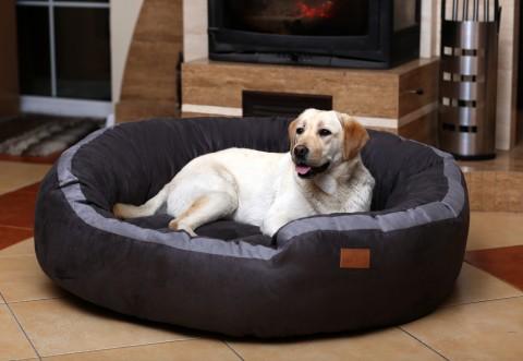 Hundebett LANA M 80 cm Velours Graphit M | Graphit