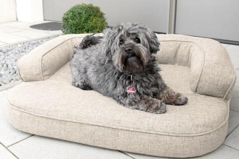 Orthopädisches Hundesofa LOTTE VISCO PLUS L 100 cm Webstoff Mélange Creme Beige L | Beige-Creme