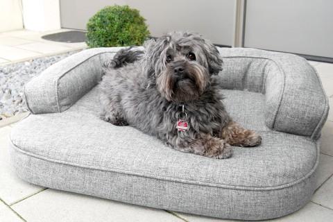 Orthopädisches Hundesofa LOTTE VISCO PLUS L 100 cm Webstoff Mélange Grau L | Grau