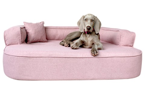 Orthopädisches Hundesofa LOTTE VISCO PLUS XL 120 cm Webstoff Mélange Altrosa XL | Altrosa