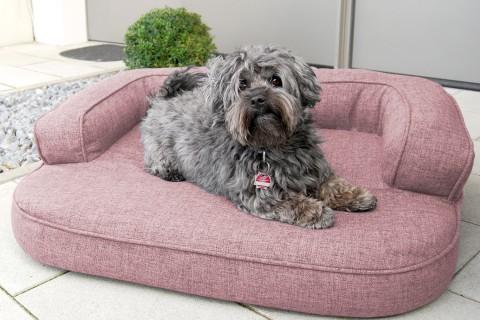 Orthopädisches Hundesofa LOTTE VISCO PLUS L 100 cm Webstoff Mélange Altrosa L | Altrosa
