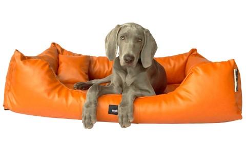 Hundebett MILEN XL+ 130 cm komplett Kunstleder Orange