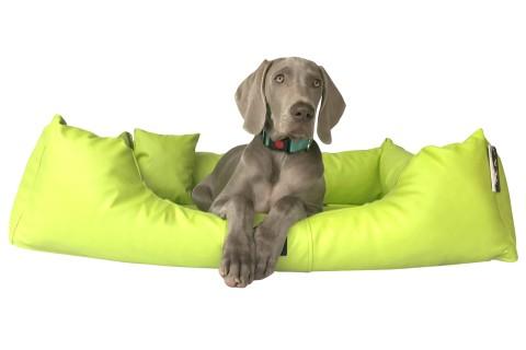Hundebett MILEN XXL+ 160 cm komplett Kunstleder Kiwi Grün