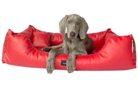 Hundebett MILEN XL+ 130 cm komplett Kunstleder Rot XL | Rot