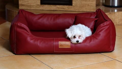 Orthopädisches Hundebett MADDOX VISCO M 80 cm Kunstleder-Velours Bordeaux-Rot M | Bordeaux-Rot