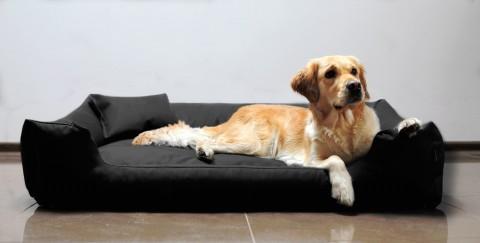 Hundebett MORITZ KOMFORT L+ 110 cm | fest gewebtes Polyester | Schwarz L | Schwarz
