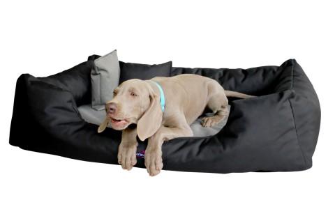 Orthopädisches Hundebett NESTOR VISCO Polyester 2000D Schwarz Beige