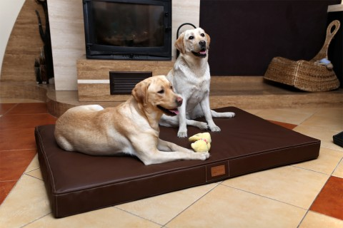 Orthopädische Hundematratze OSCAR VISCO XXL 150 cm Kunstleder Braun XXL | Braun