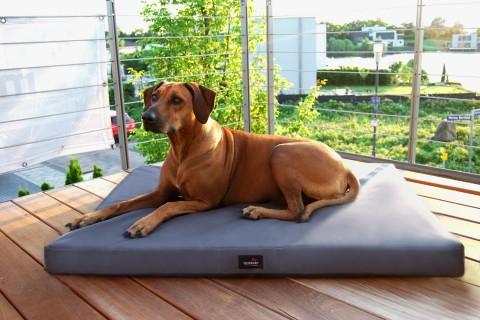 Orthopädische Hundematratze ALICE VISCO XXL 150 cm Polyester 600D Graphit