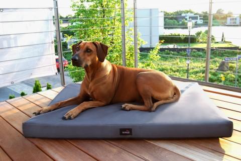 Orthopädische Hundematratze ALICE VISCO Polyester 600D