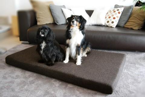 Orthopädische Hundematratze ANTON VISCO PLUS XXL 145x85x11 cm Polyester Mélange Braun XXL | Braun