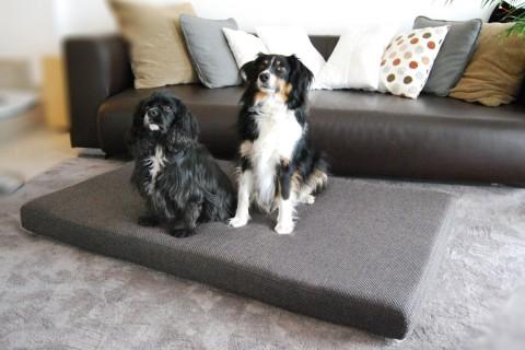 Orthopädische Hundematratze ANTON VISCO PLUS M 75x55x9 cm Polyester Mélange Beige