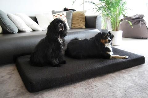 Orthopädische Hundematratze ANTON VISCO PLUS M 75x55x9 cm Polyester Mélange Anthrazit Schwarz