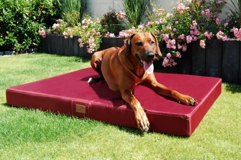 Hundematratze HUGO BASIC XL 120 cm Polyester 210D Bordeaux-Rot XL | Schwarz