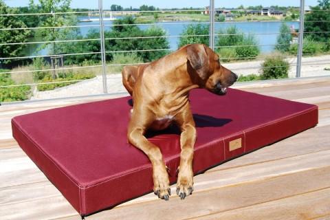 Hundematratze HUGO BASIC L 100 cm Polyester 210D Bordeaux-Rot L | Dunkel Bordeaux