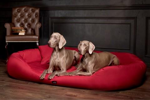 Hundebett ARES KOMFORT XL+ 125 cm Polyester 600D Bordeaux-Rot