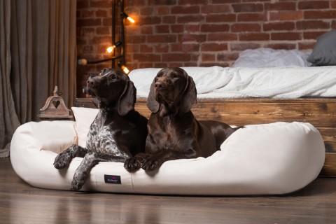 Hundebett ARES KOMFORT XL+ 125 cm Polyester 600D Creme XL+ | Creme