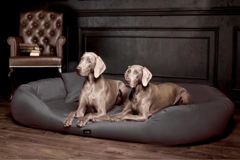 Orthopädisches Hundebett ARES VISCO XXXL 180 cm Polyester 600D Graphit XXXL | Graphit