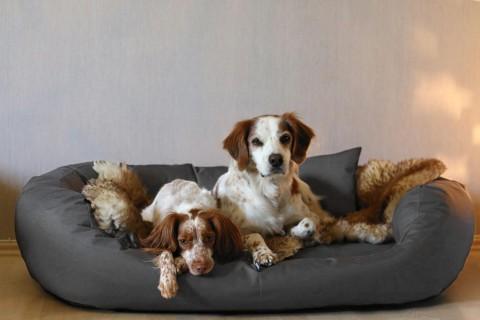 Hundebett ARES KOMFORT XL+ 125 cm Polyester 600D Graphit XL+ | Graphit