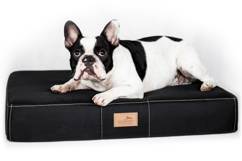 Orthopädische Hundematratze FLOKI ORTHO PLUS High-Tech Velours M 80 cm Schwarz M | Schwarz