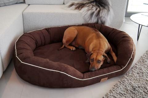 Orthopädisches Hundebett MARLON VISCO PLUS M 85 cm Velours Braun