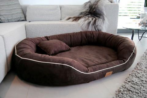 marlon ortho plus hundebetten und mehr bei tierlando. Black Bedroom Furniture Sets. Home Design Ideas