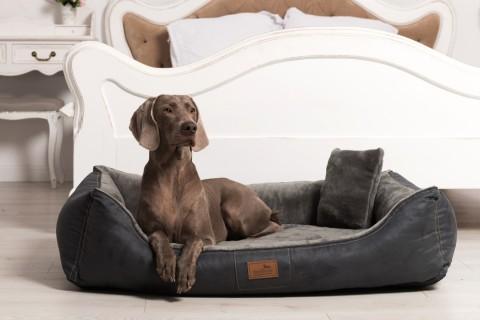 Ultraweiches orthopädisches Hundebett FLOYD High-Tech Velours / Plüsch XL 120 cm Graphit XL | Graphit