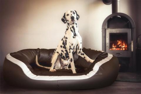 Orthopädisches Hundebett PEPPER ORTHO PLUS Kunstleder